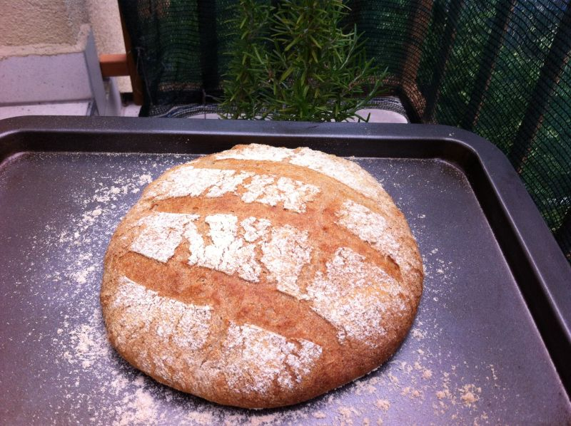 Kvasni kruh, dio prvi: starter ilikvas