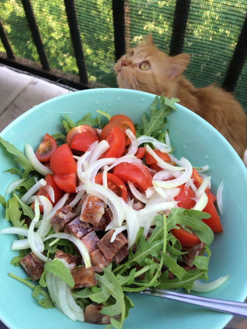 Ljetna salata odtlačenice