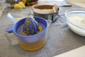 Orange cheesecake_juice and pulp