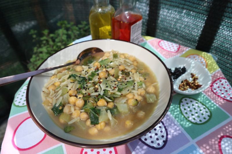 Zeleni minestrone_naslovna