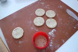 Fini krekeri od dimljenog sira_5