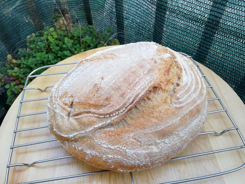 Kvasni kruh – pitanja iodgovori