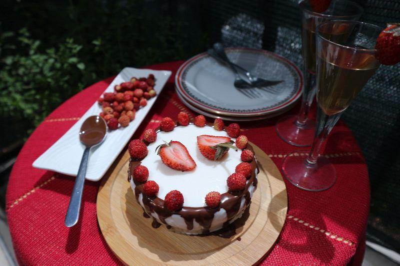 Torta za dvoje, sa divljimjagodama